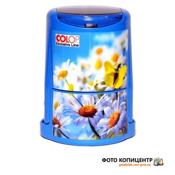 colop_Daisies